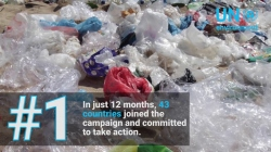 Top 5 #CleanSeas highlights - Year 1