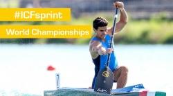 Semifinals C1M500   2015 ICF Canoe Sprint World Championships